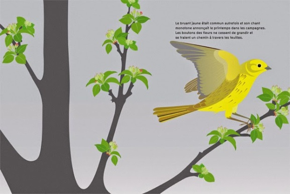 L'Oiseau Sur La Branche illu 2